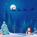 Обои на рабочий стол - ночь, снеговик, елки