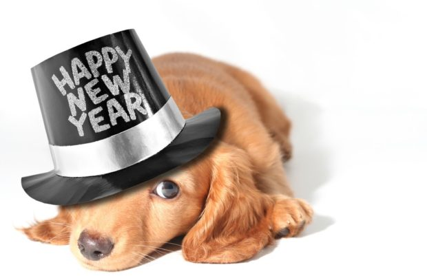 Новогодние картинки 2019 для декупажа