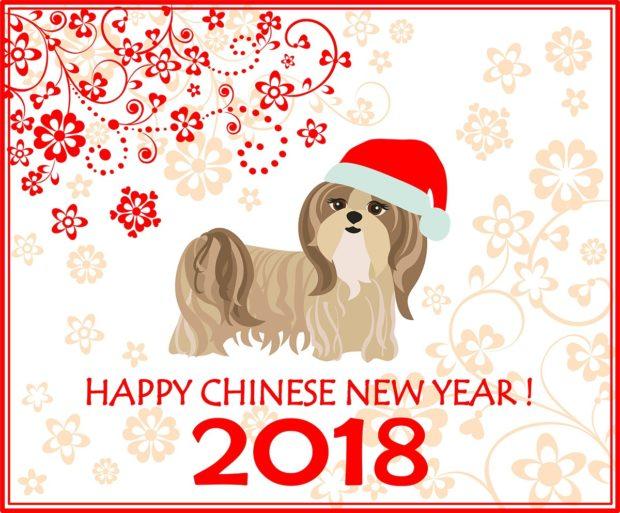 Новогодняя открытка с символом 2019 года Собакой в шапке Санты