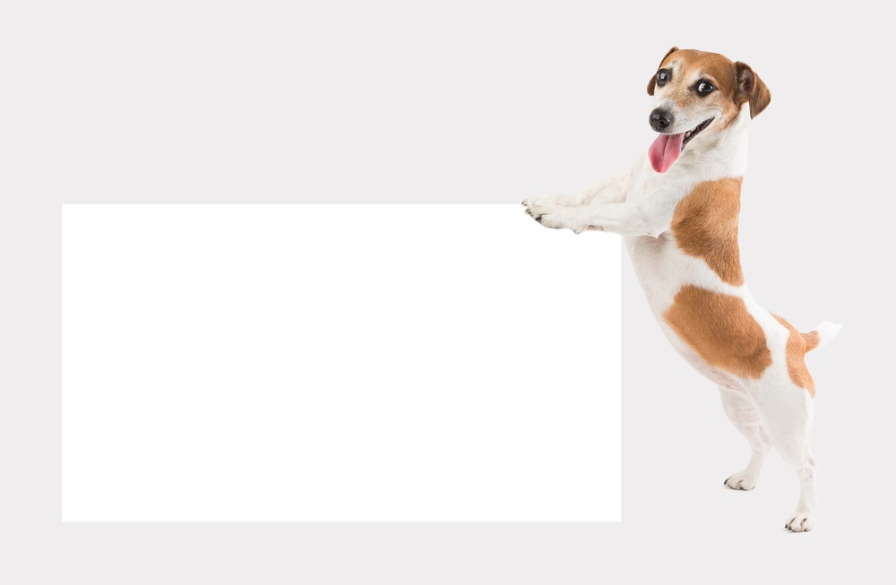 Новогодние открытки с собаками 2018