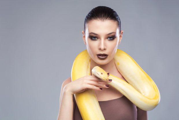 Гороскоп для Змеи на 2018 год, здоровье, любовь, карьера
