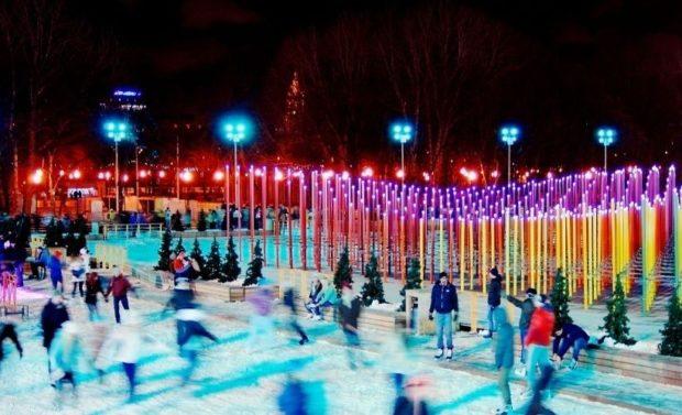 каток в парке Горького цены