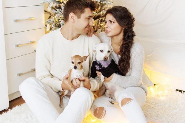 Подарки в год Собаки на Новый год 2018