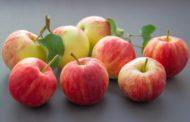 Какого числа Яблочный Спас в 2018 году