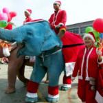 Новогодний слон