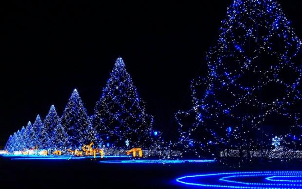 Новый год 2018 в Саратове