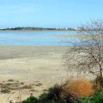 кипр Ларнакское озеро