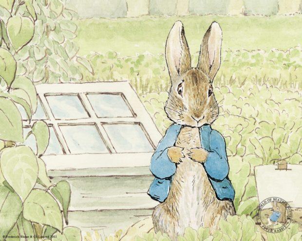 Кролик Питер — мультфильм 2018 года