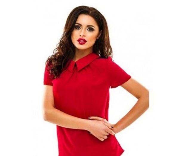 модные блузки весна лето 2019: с воротником красная шифоновая рукав короткий